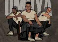 Afro Brotherz ft Indlovukazi – Umoya (DJ Jim mastershine's remix)