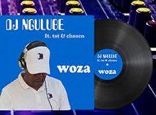 Dj Ngulube – Woza