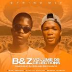 Djy Biza ZDD Projects – B Z Clections Vol.09