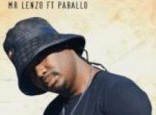 Mr Lenzo ft Paballo – Wang Jochoja