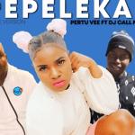Pertu Vee ft Dj Call Me & Mjelo – Pepeleka