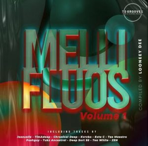 Various Artists – Mellifluous Vol.1 (Compiled By Looney Dee)