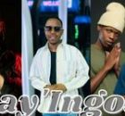 DBN Gogo, Felo Le Tee, Mellow and Sleazy ft Young Stunna & Sizwe Alakine – Nay'Ingozi