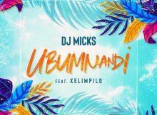 DJ Micks ft. Xelimpilo – Ubumnandi