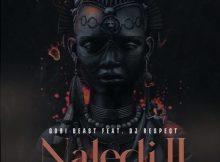 Gobi Beast Ft. DJ Respect – Naledi II