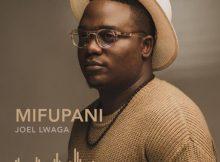 Joel Lwaga – Mifupani