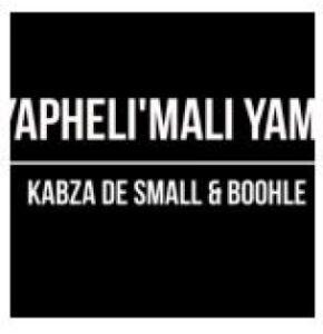 Kabza De Small Ft. Boohle – Yapheli'Mali Yam (snippet)