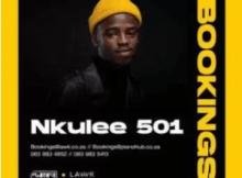 Nkulee 501 – Fountain & Hills (Dub Mix)