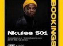 Nkulee 501 – Superfly