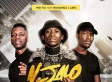 Pro Tee ft Manqonqo & Airic – Njalo
