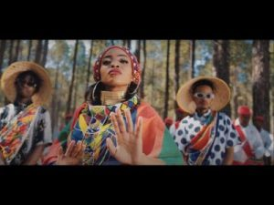 Zanda Zakuza ft Mr Six21 DJ, Bravo De Virus & Fallo SA – Afrika Video