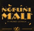 KXD BEATS ft Money Ostrich – Ngfuni Mali