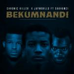 Chronic Killer ft. Jayworlld & Sakhumz – Bekumnandi