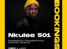 Nkulee 501 ft. Zan SA & Fanarito – Related