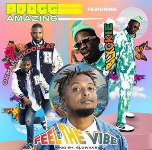 PDogg Amazing Ft. Okmalumkoolkat & Blxckie – Feeling The Vibe