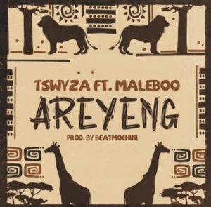 Tswyza Ft. Maleboo - Areyeng